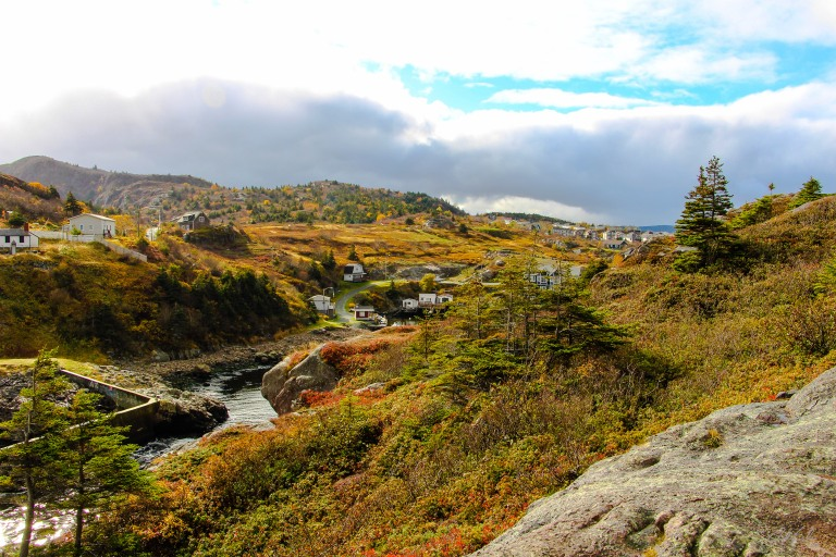 back-of-quidi-vidi